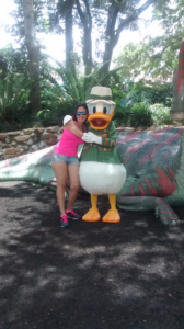 porque visitar animal kingdom